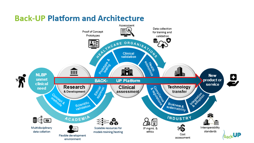 Framework for clinical translation in NLBP research